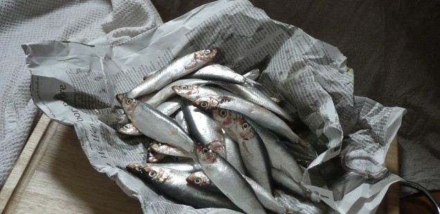 Cook: To Fry Sprats. Omega 3 breakfast richness.